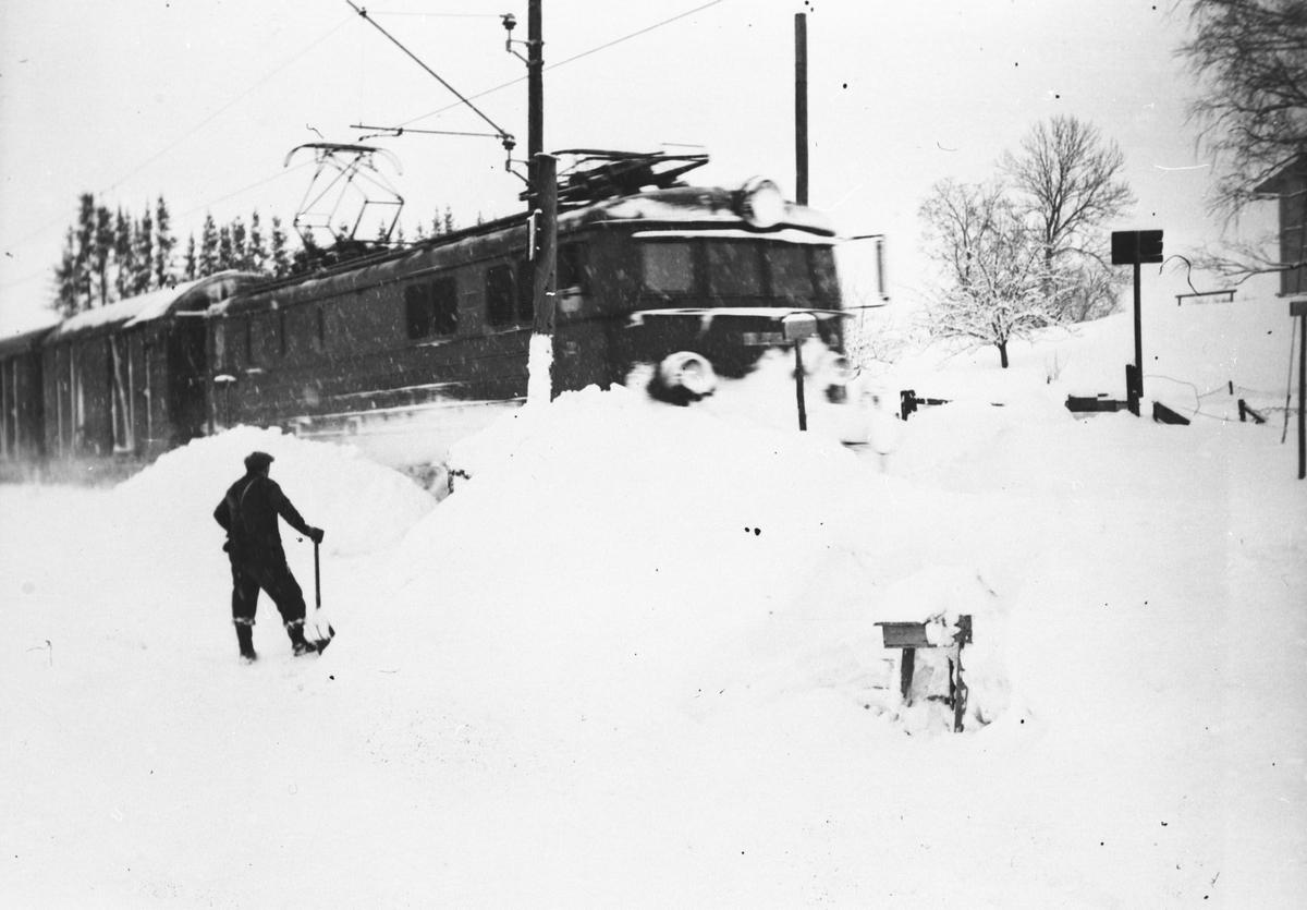 Toget på Bodding passerer planovergang en i 1954.