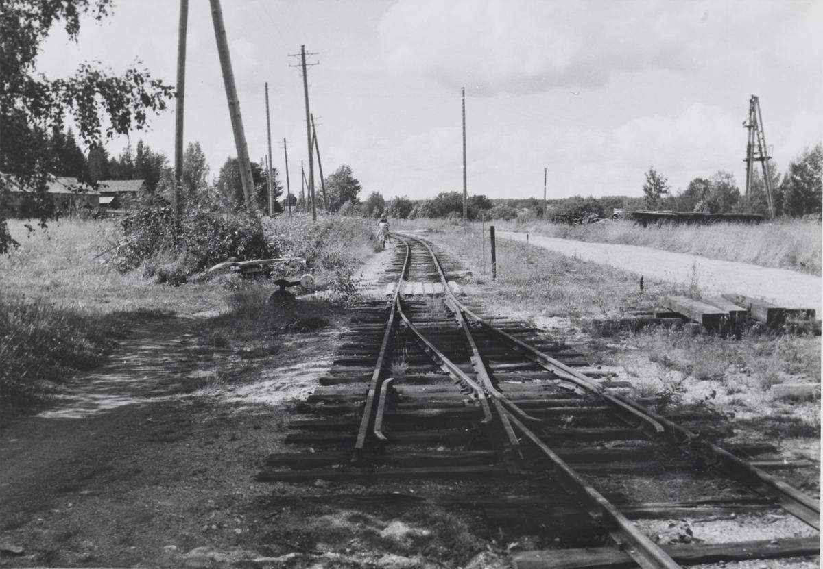 Lierfoss stasjon sommeren 1961, sett i retning mot Aurskog. Sporet er delvis fjernet.