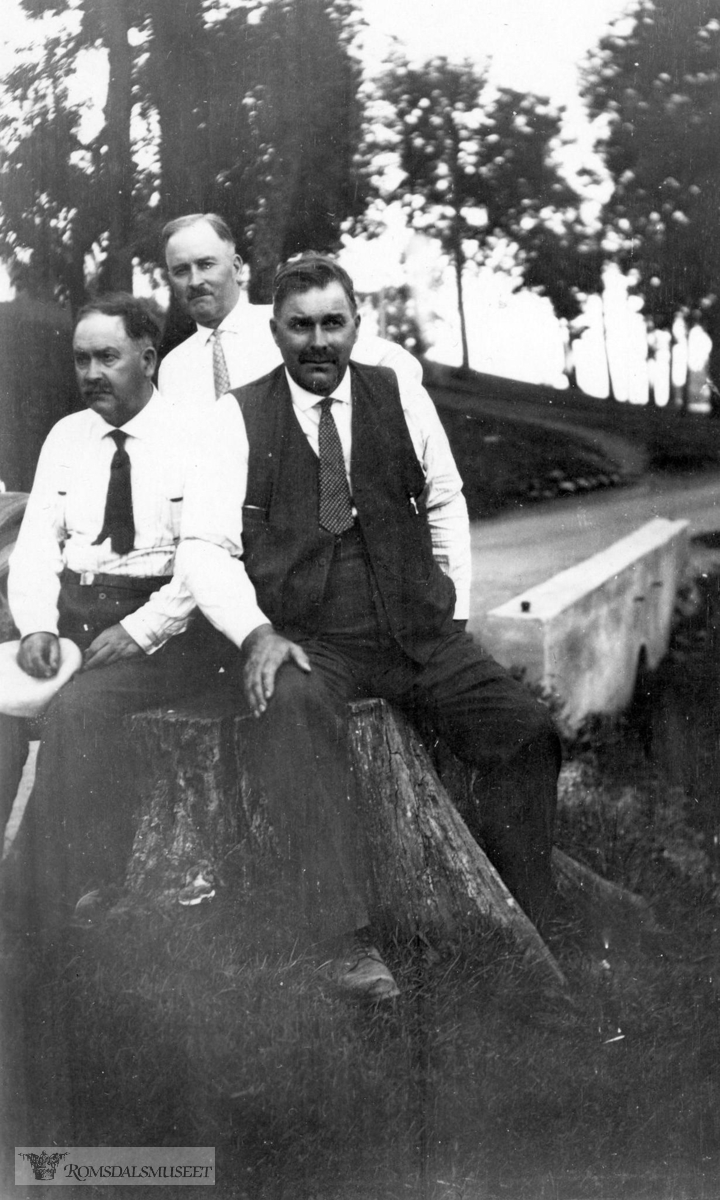 ".(Se boken ""Amerikabrev : 1880-1950"" Rassmus Sunde)"