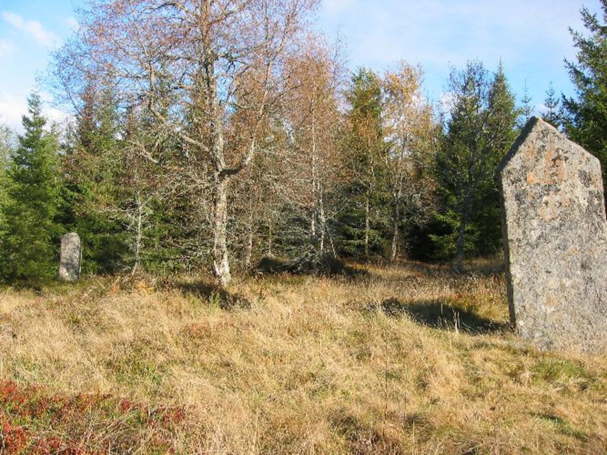 Stort gravfelt med mange hustufter, lang flere enn hva som er vanlig på et gårdsanlegg. Flere infotavler