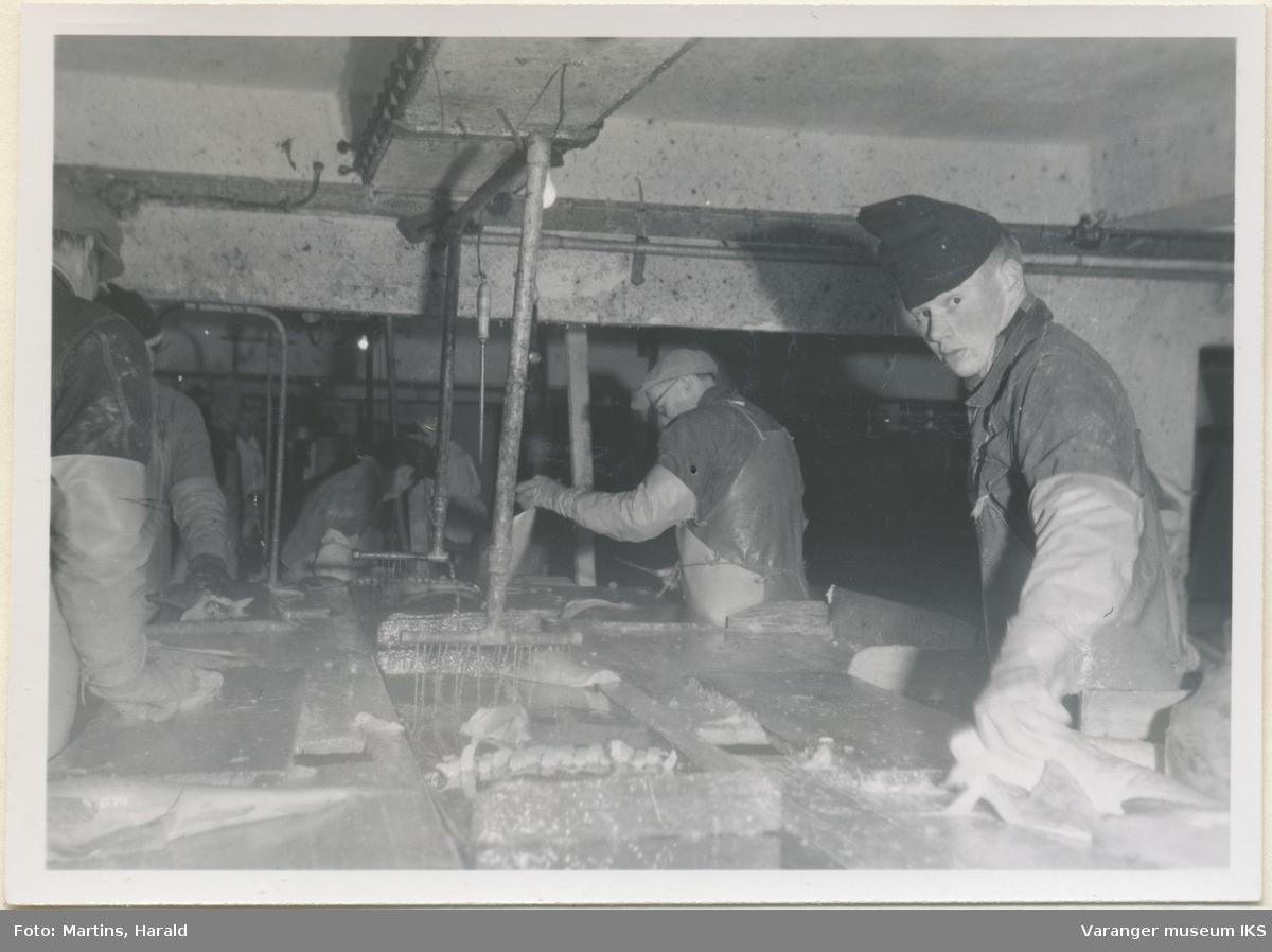 Fisken flekkes, filetfabrikken på Finotro, 25. januar 1956