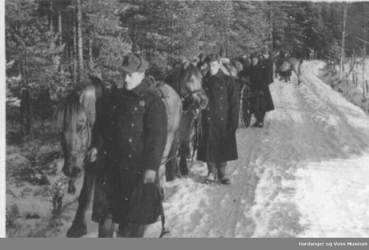 Gruppe, menn, gutar, uniform, hestar, i militæret, snø. Ute på manøver