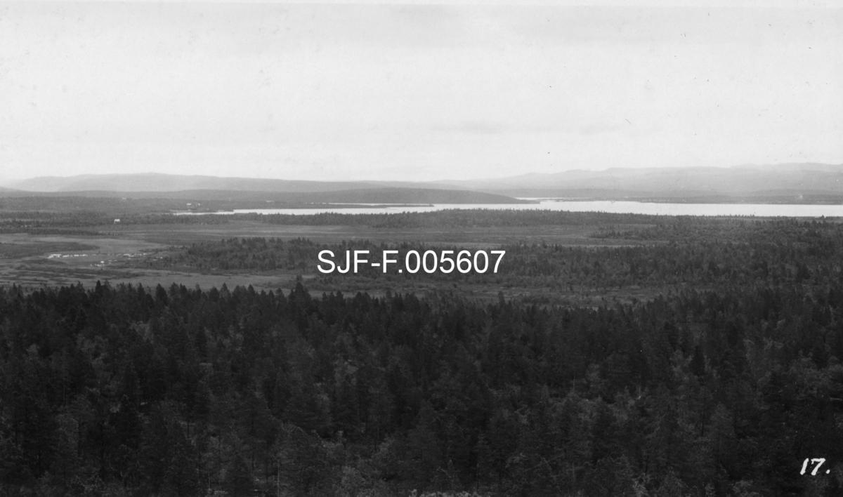 Utsiktsbilde fra et høydedrag som fotografen kalte «Høide 96» i Øvre Pasvik i Finnmark.  Dette var en militær observasjonspost på norsk grunn, men med god utsikt mot det da dette fotografiet ble tatt var sovjetrussiske og finske områder.  Bildet er tatt i samband med en finnmarkekskursjon som Nord-Norges Skogmannsforbund arrangerte i 1938.  For fotografen har det antakelig vært et mål å dokumentere landskapet, med furuskog, avbrutt av myrområder og vannspeilet på en større innsjø.