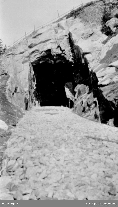 Traseen mot Stueberget tunnel med kultdekke, sett nordover