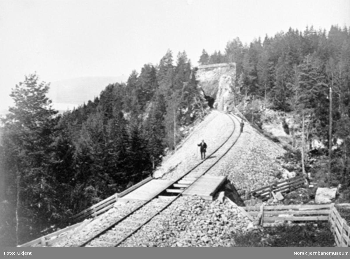 Jernbanelinjen mot Spikkestad tunnel II (Røken lille tunnel)