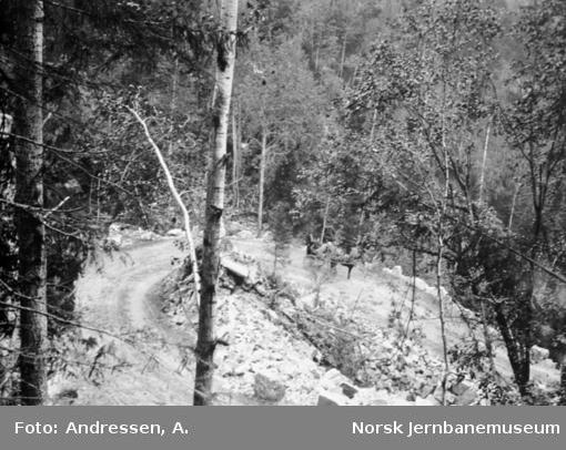 Transportveien Tyri - Sætre på Bukkefjell