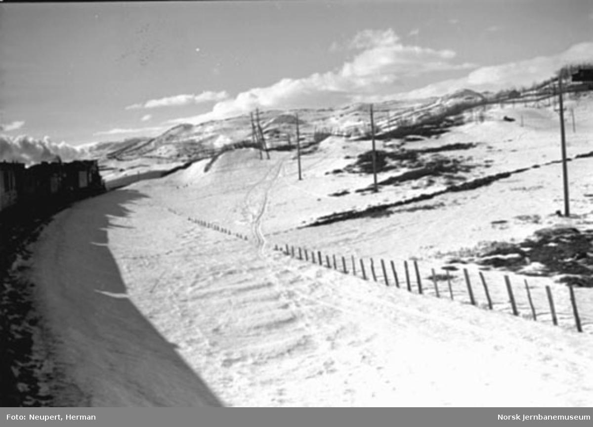 Bergenstoget på fjellet, fotografert fra vogn bak i toget