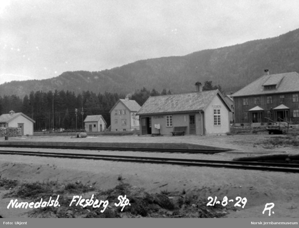 Flesberg stasjon