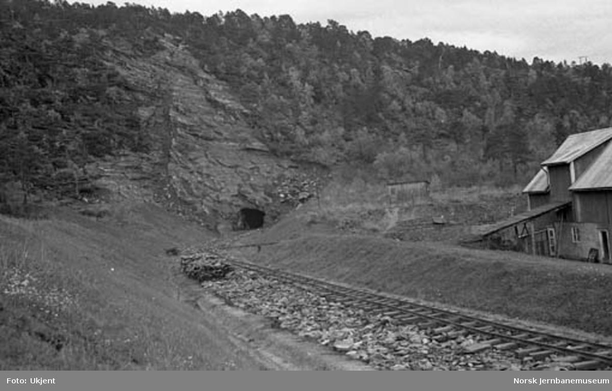 Nordlandsbaneanlegget : nordre innslag til Bratthaugen tunnel