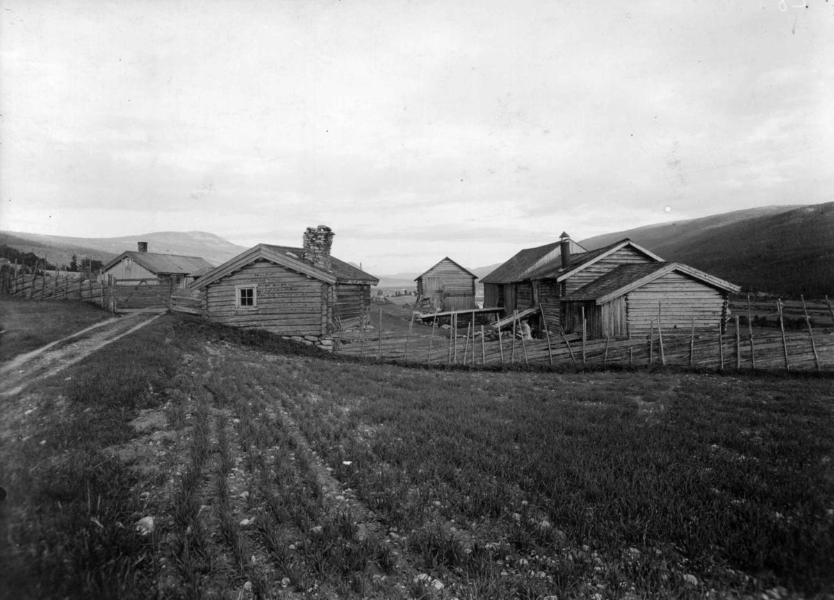 Søndre Bjøntegård, Øvre Rendal, Nord-Østerdal !920 årene. Tun.