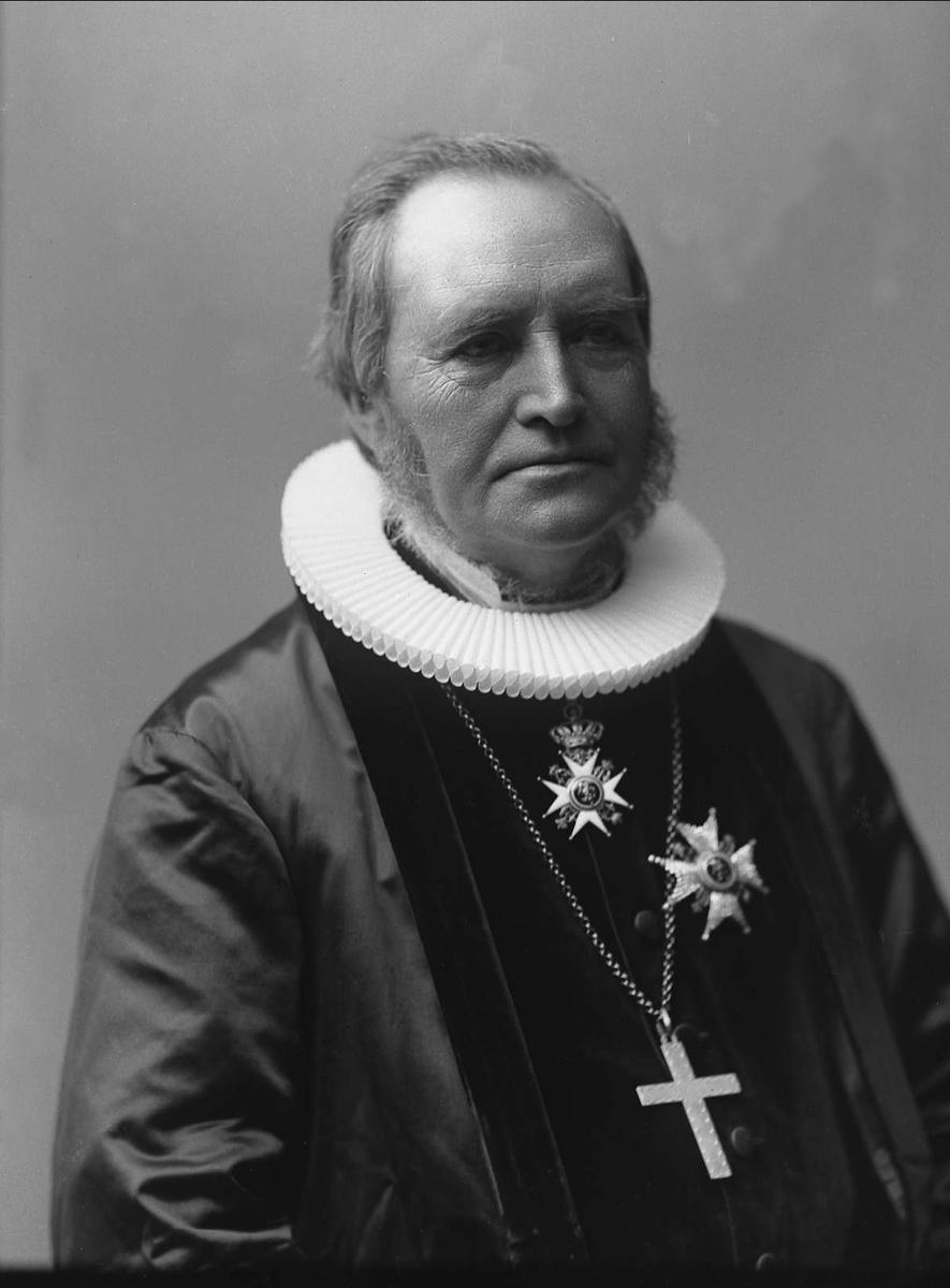 Portrett, biskop Skaar med prestekjole, bispekors og St. Olav.