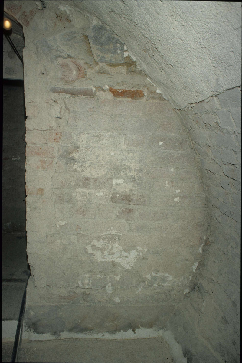 Byggnadshistorisk undersökning av Theatrum Oeconomicum, kvarteret Torget, Uppsala 1991