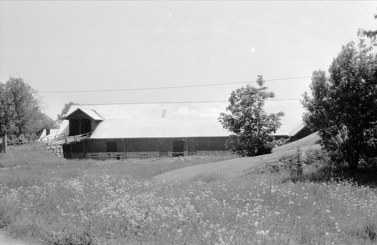 Ladugård och loge, Hammarby 1:1, Hammarby, Danmarks socken, Uppland 1977