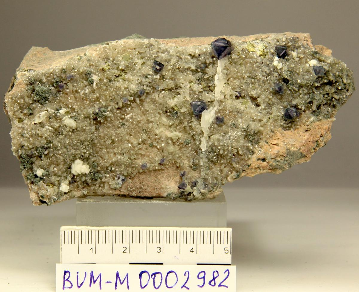 Flusspat krystaller, blålige oktaedre med ekstra flater. Små kvarts og kalsittkrystaller. Huken stenbrudd, Grorud.