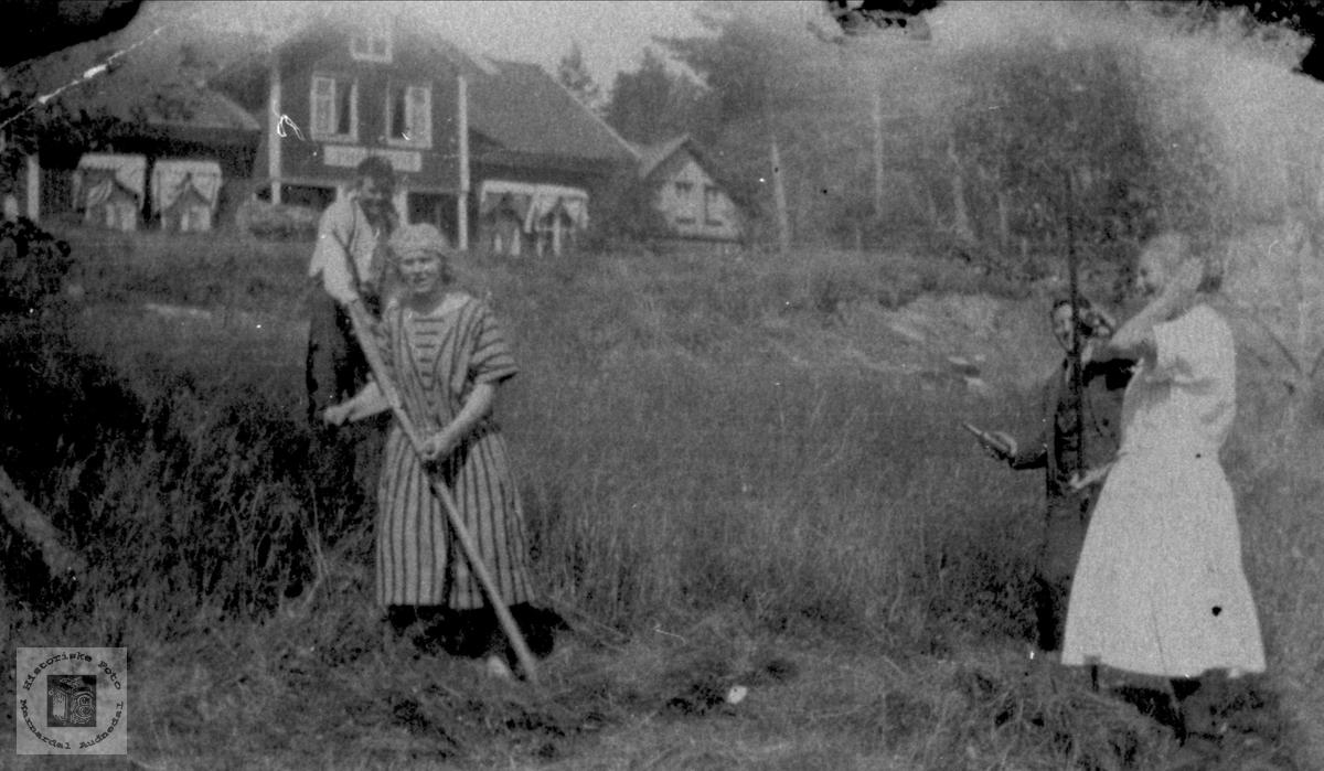 Slåttonn i Bjelland.