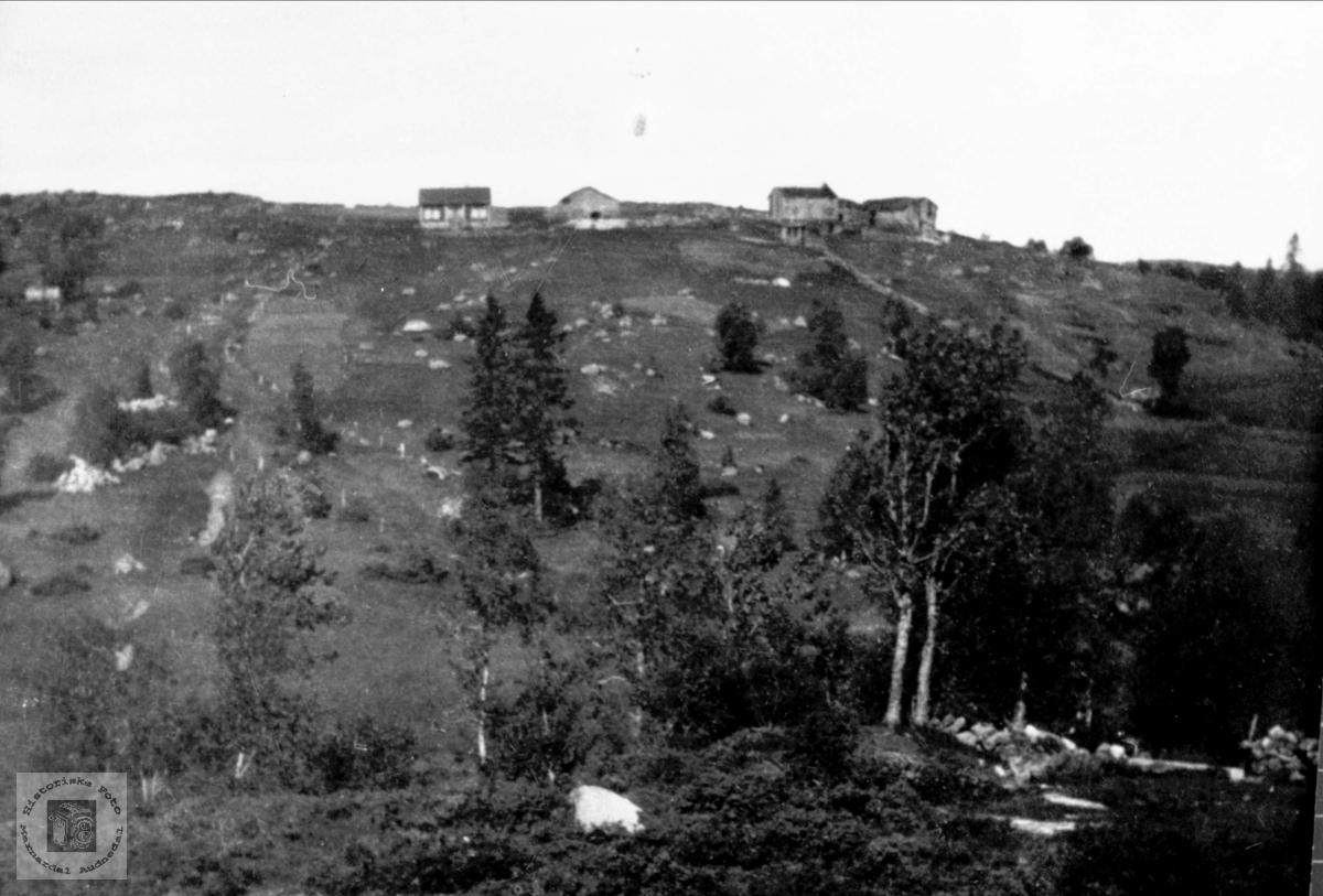Gammelt bilde av Bjørkelid i Laudal