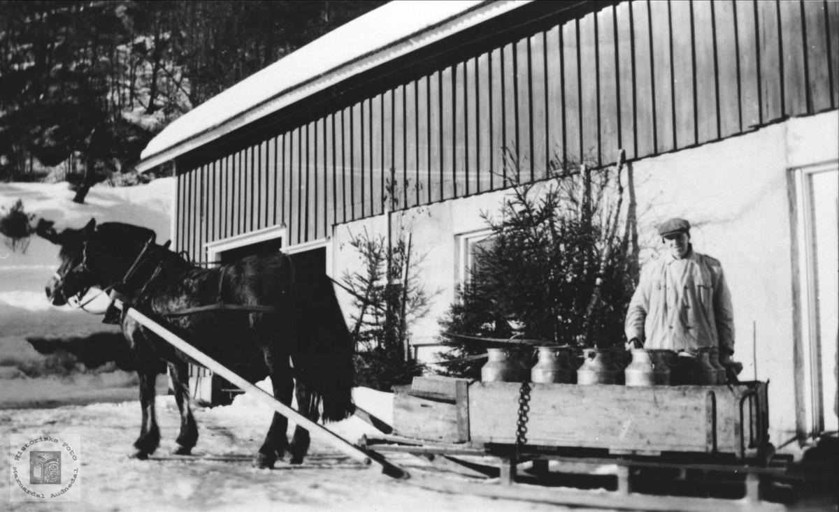 Siste melkespannlast, Vollen på Gangså Laudal.