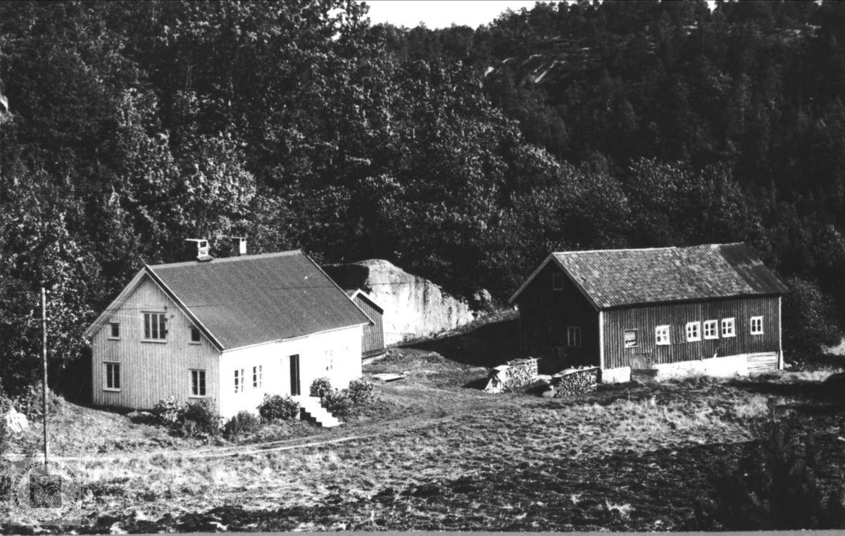 Skaar i Øyslebø.