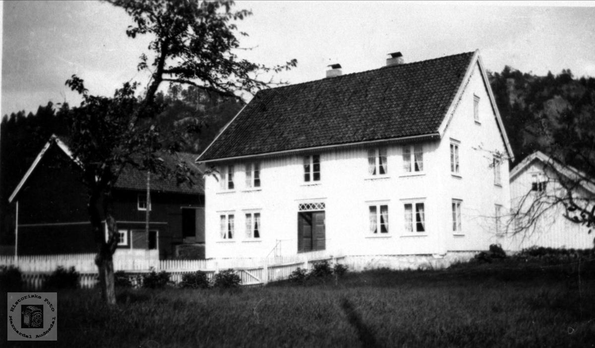 Eier Olav Holmegård. Gardsbruk Heddeland 84.3 i Øyslebø.