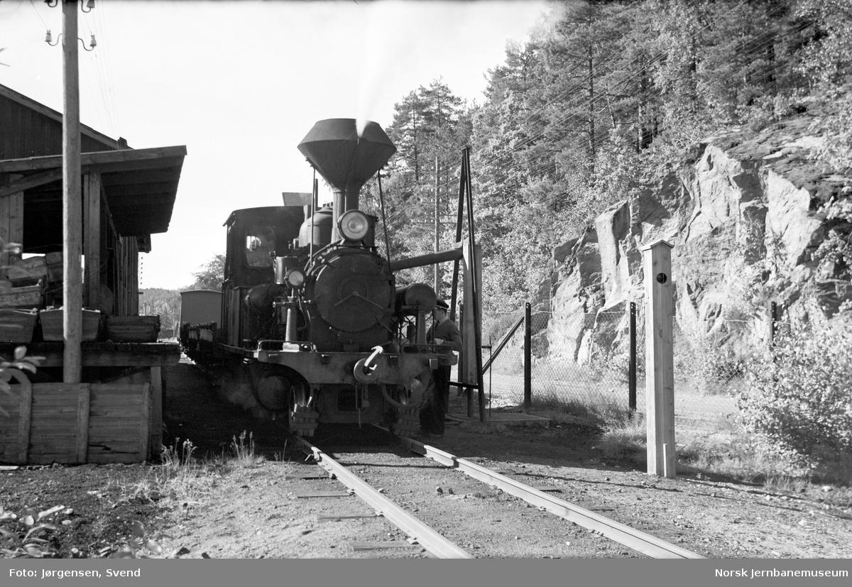 Damplokomotiv nr. 5 med godstog 5661 tar vann på Hægeland stasjon