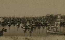 Fiskebåter i fiskevær, ukjent sted