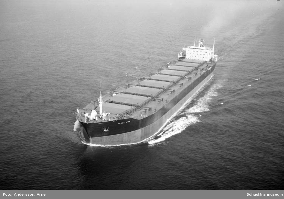 M/S Norse Lion DWT. 116.092 Rederi Cardigan Shipping Co. Ltd., Cardiff England Kölsträckning 71-10-27 Nr. 244 Leverans 72-06-16 Bulkfartyg