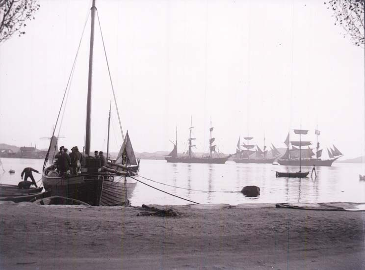 """Enligt text som medföljde bilden: """"Marstrand. Najaden, Gladan, Falken."""""""
