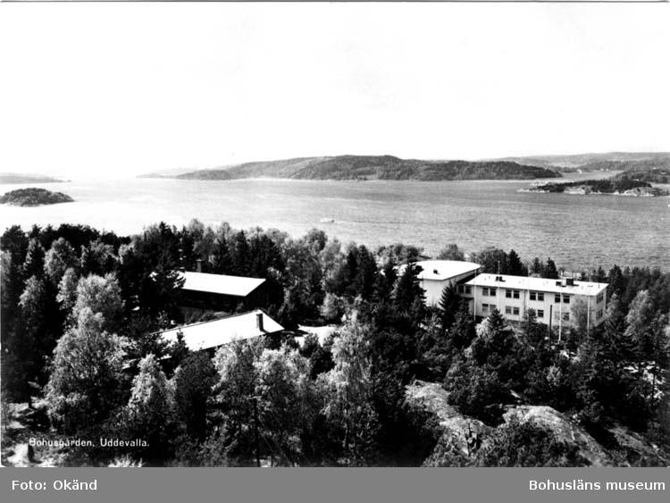 """Tryckt text på vykortets framsida: """"Bohusgården, Uddevalla."""" Tryckt text på vykortets baksida: """"Föreningen Nordens Stiftelse BOHUSGÅRDEN, Uddevalla."""""""