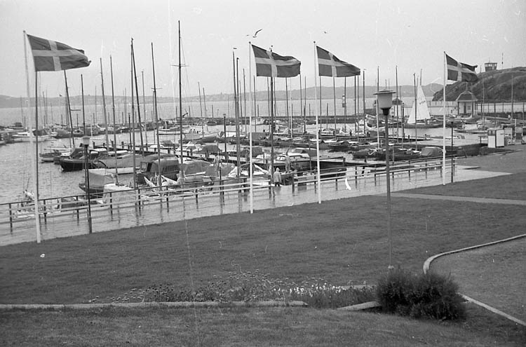 "Enligt fotografens notering: ""Havsbadsparken i Lysekil""."
