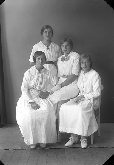 "Enligt fotografens journal nr 3 1916-1917: ""Eskilsson, Elin Berg, Ödsmål""."