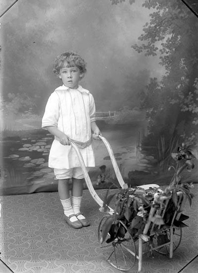 """Enligt fotografens journal Lyckorna 1909-1918: """"Westfeldt, Fru Lyckorna""""."""