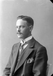 "Enligt fotografens journal nr 2 1909-1915: ""Andersson, Herr"