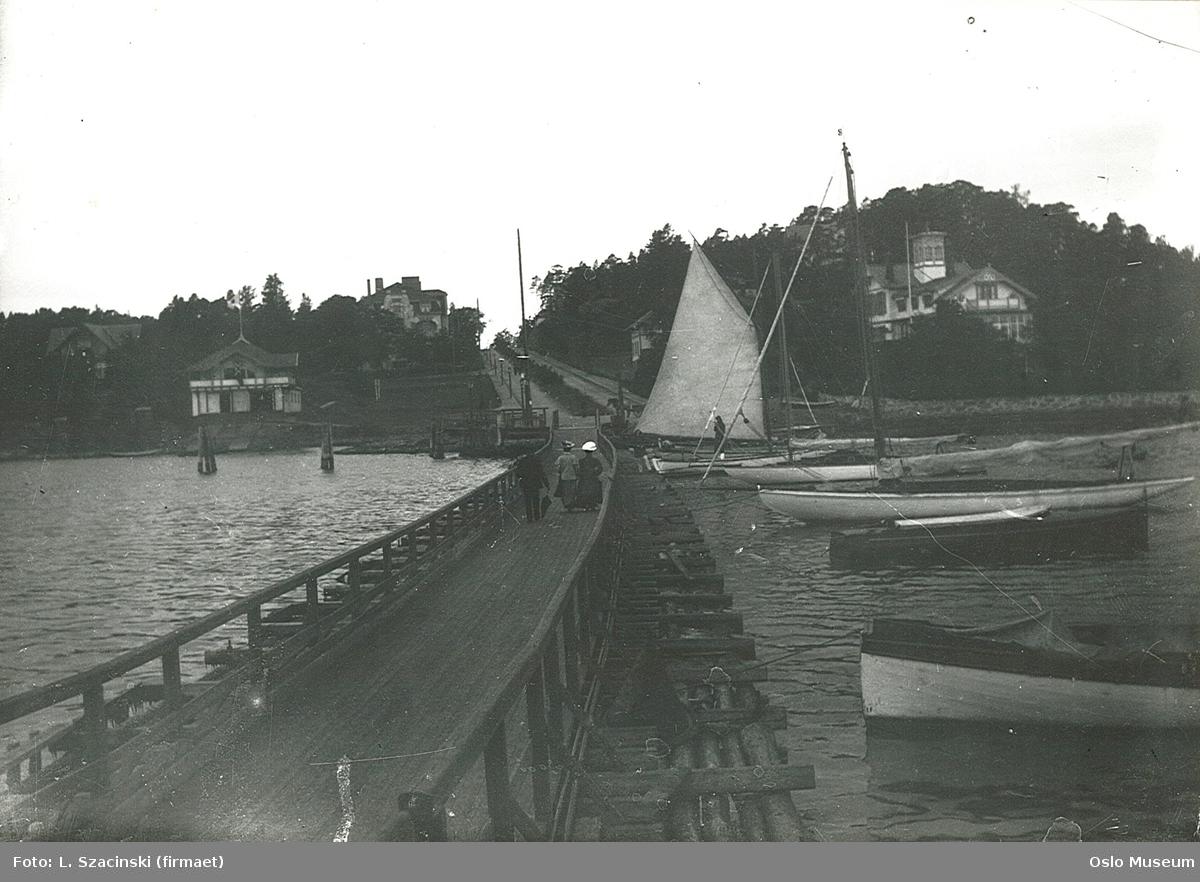 bro til Dronningen restaurant, båter, Norske Studenters Roklub, villabebyggelse