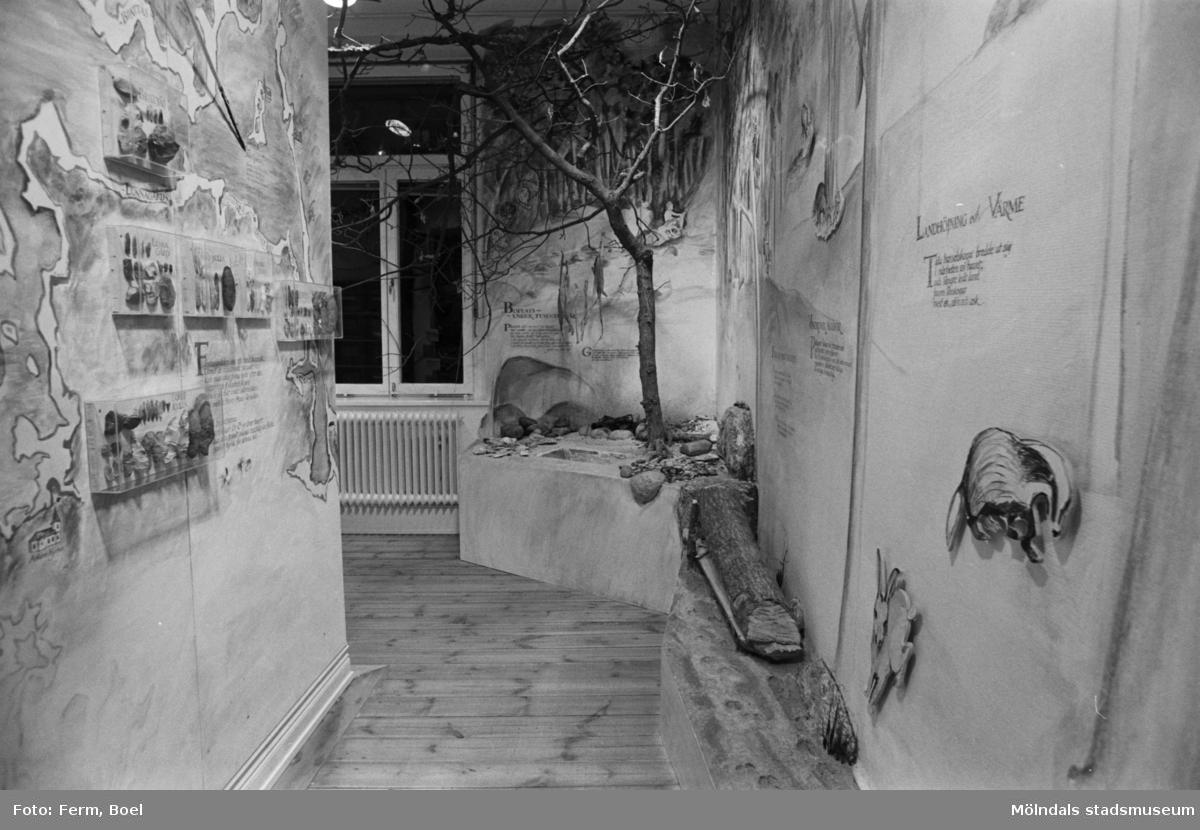 Mölndals museums basutställningar: stenålder.