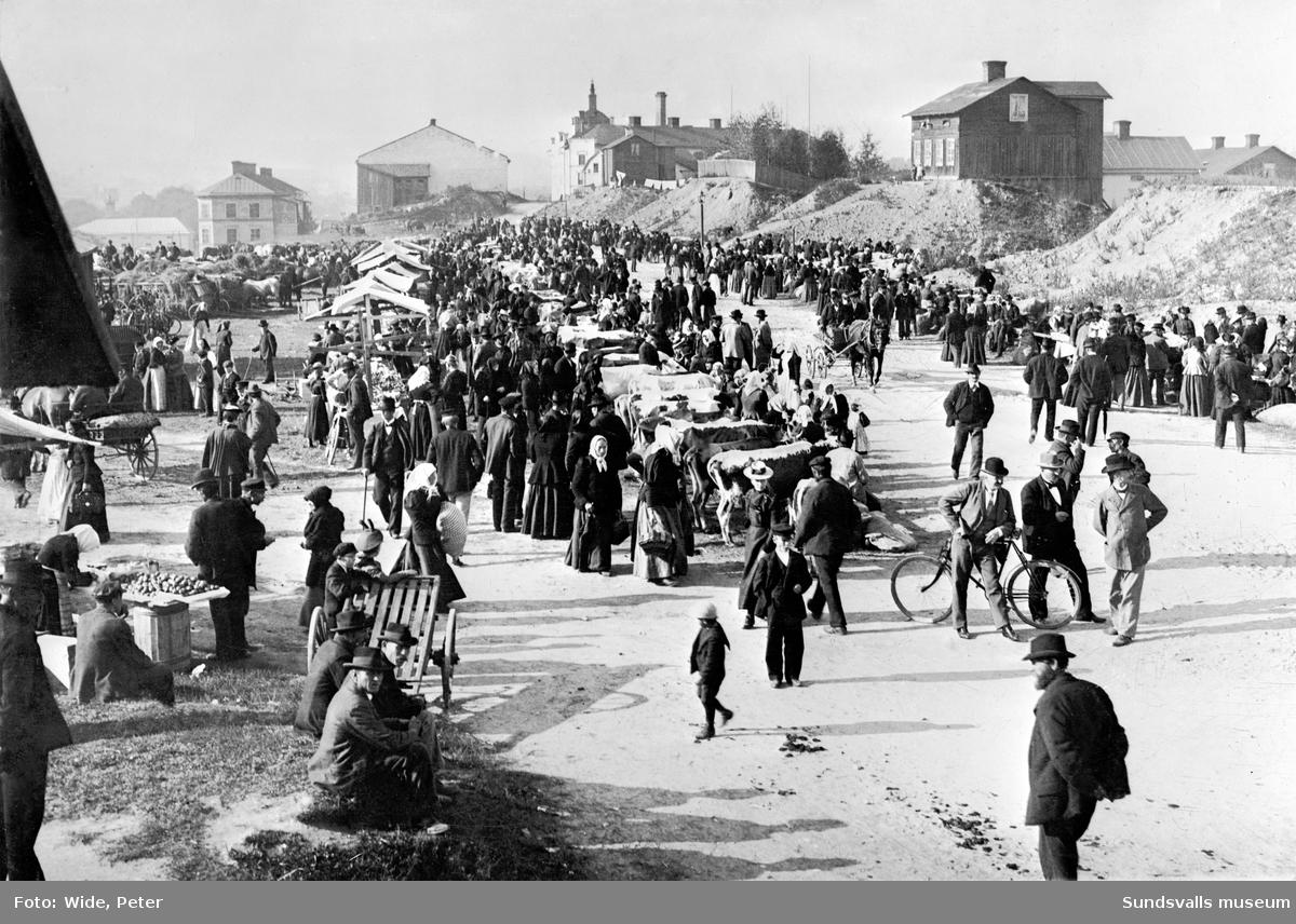 Kreatursmarknad Väst på stan.  Kretaursmarknad hölls på Kotorget. Plats nuvarande Grönborgsgatan väster om Dalgatan. I bakgrunden Grönborgs.