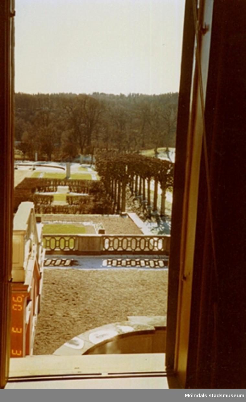 Utsikt mot parken från ett fönster.