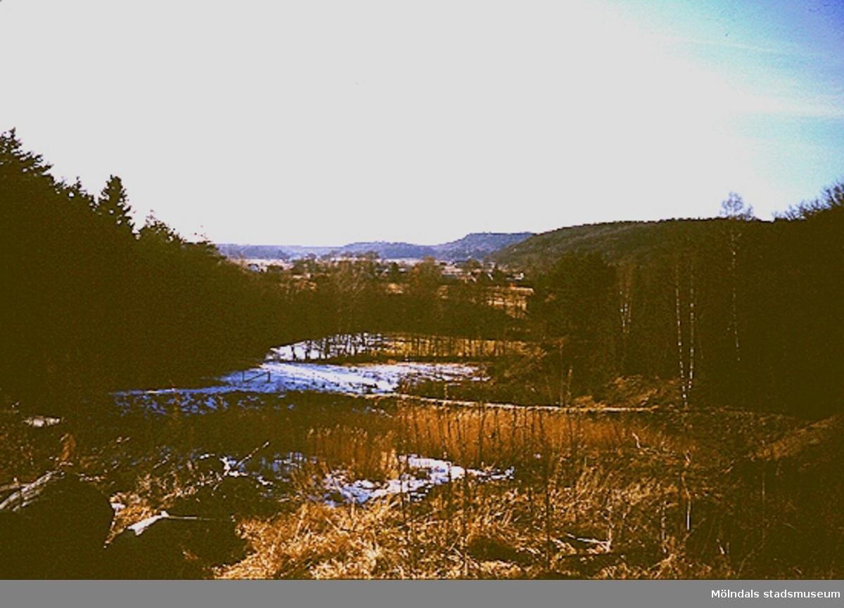 Vy över skog, ängar, berg och dalar.