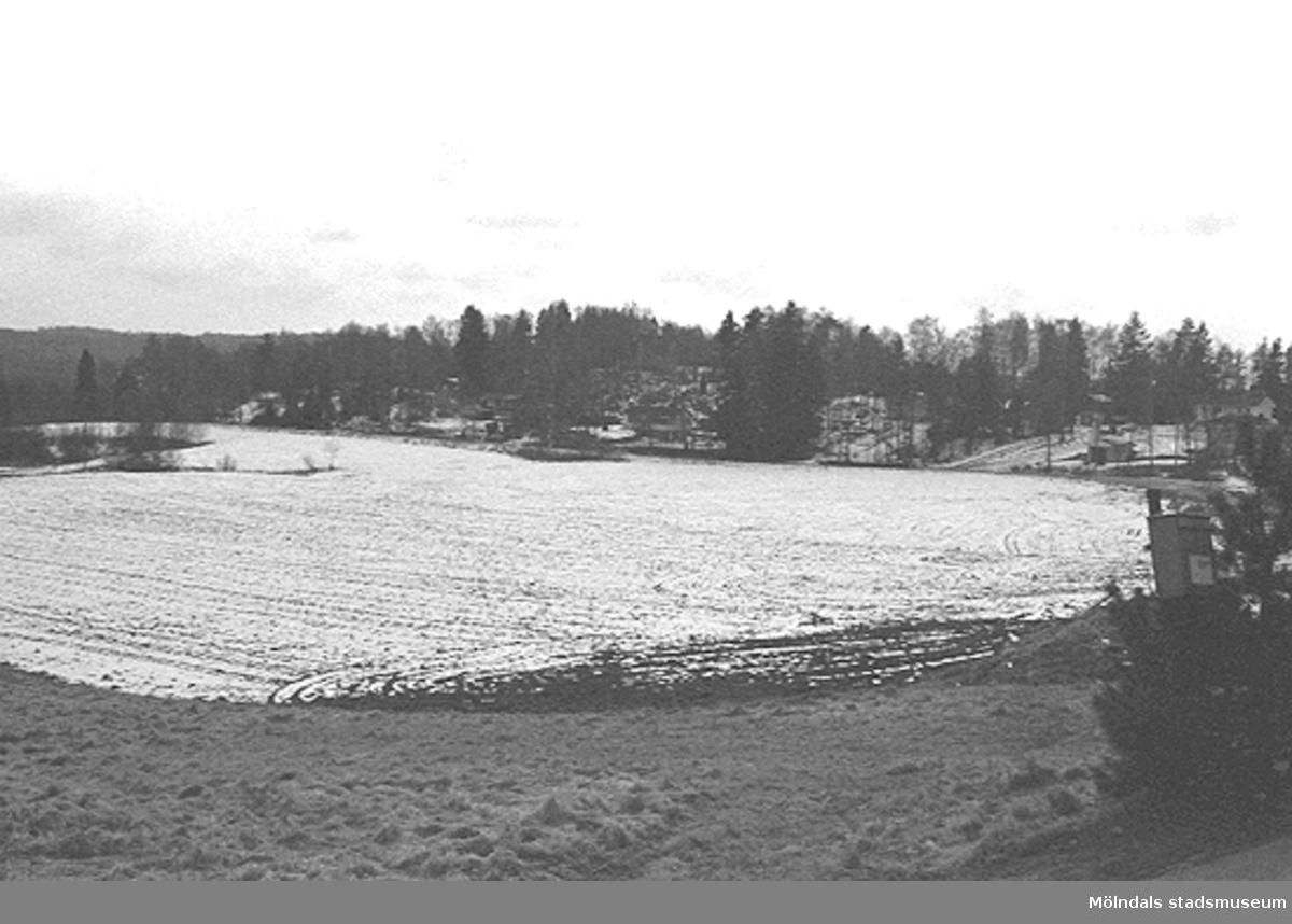 Ängar, utsikt från Börsås i Hällesåker, mars 1993.