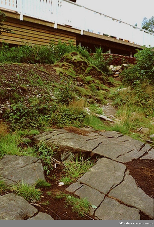 Sluttning nedanför bostäder tillhörande kvarteret Ekriskan i Balltorp, augusti 1993.