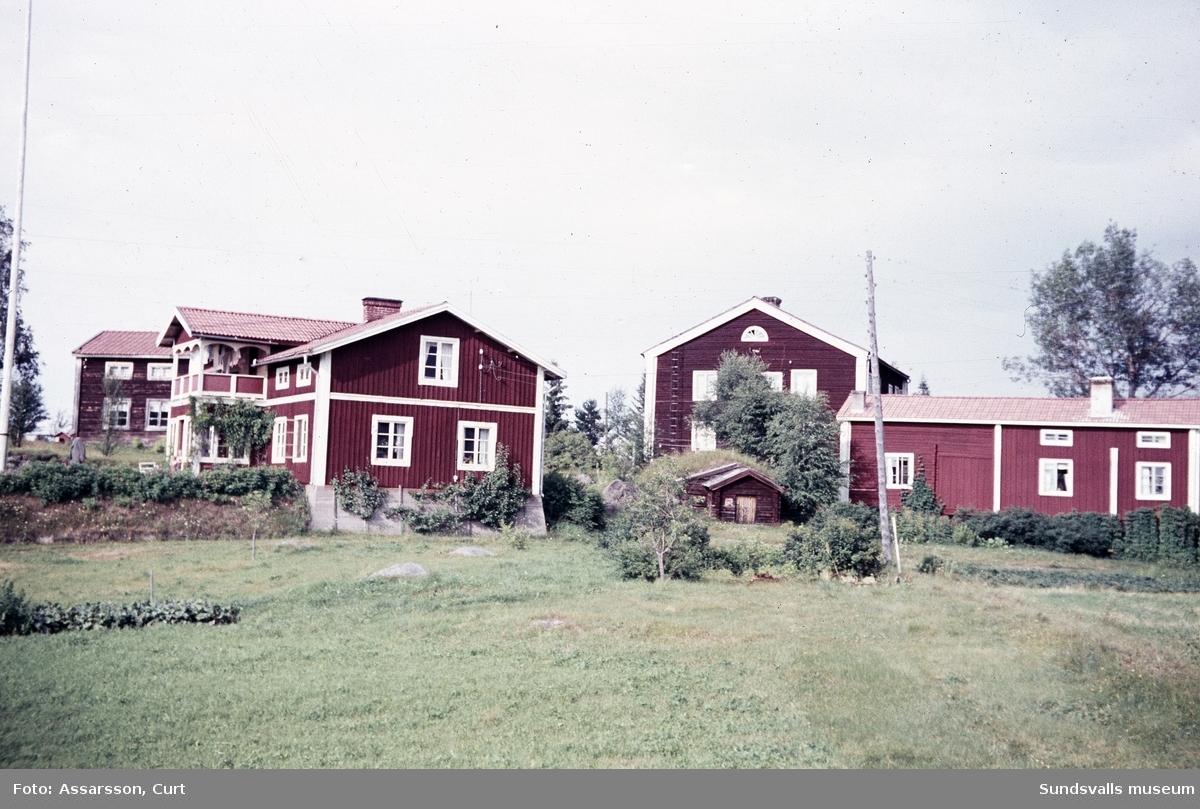 Ytterturingen, Halfvarssons gårdar.