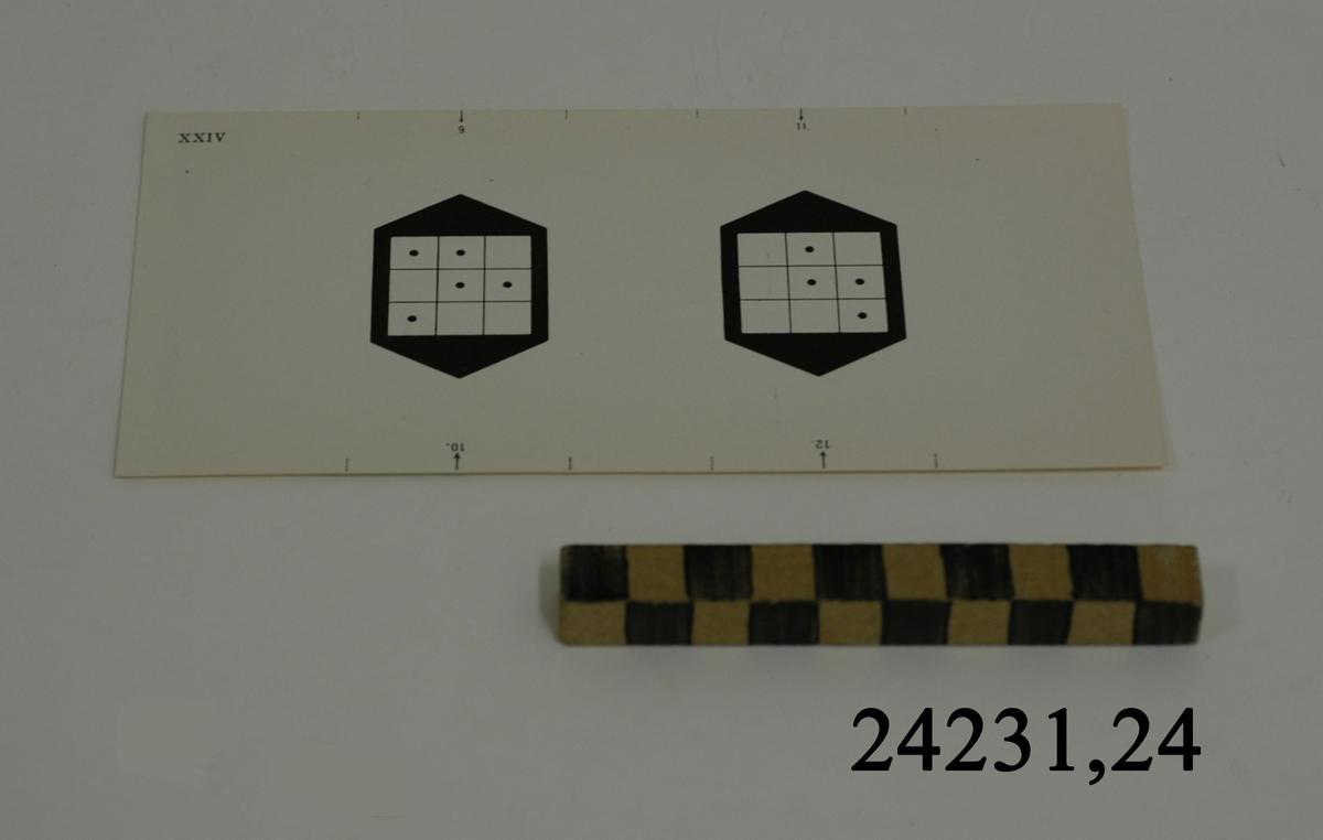 Rektangulärt vitt pappersark numrerat XXIV i övre vänstra hörnet. Utmed långsidornas kanter, små markeringar med streck och siffrorna 9 -12. På arket syns två stycken olika bilder i svartvitt, en för vardera öga. Till vänster: Svart figur med vit kvadrat indelad i nio stycken små fält. I fem av fälten en svart punkt. Till höger: Samma figur med fyra punkter dessa är placerade i andra fält.