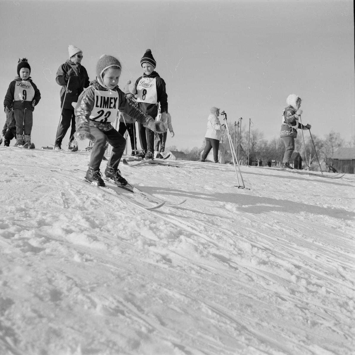 Examen i barnskidskolan, sannolikt Uppland mars 1968
