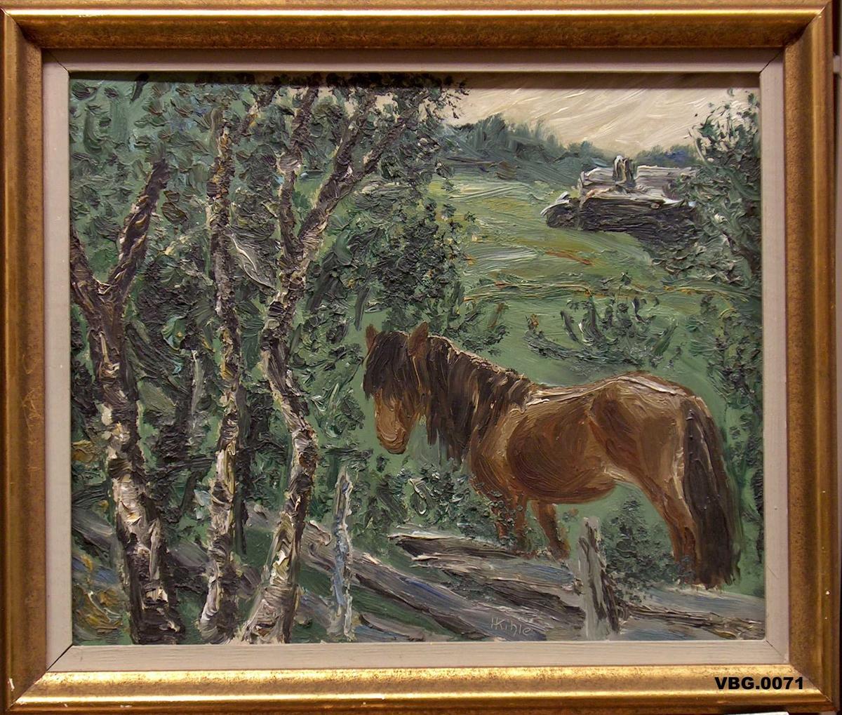 Hest som står ved ein skigard. Bjørkar framføre gjerdet.Hus i bakgrunnen.