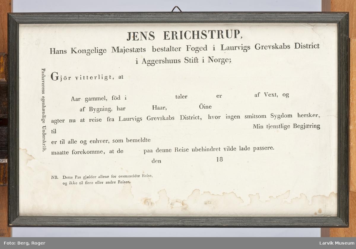 Reisepass, ferdig trykket skjema for utfylling, se tekstens innhold under Påført tekst.