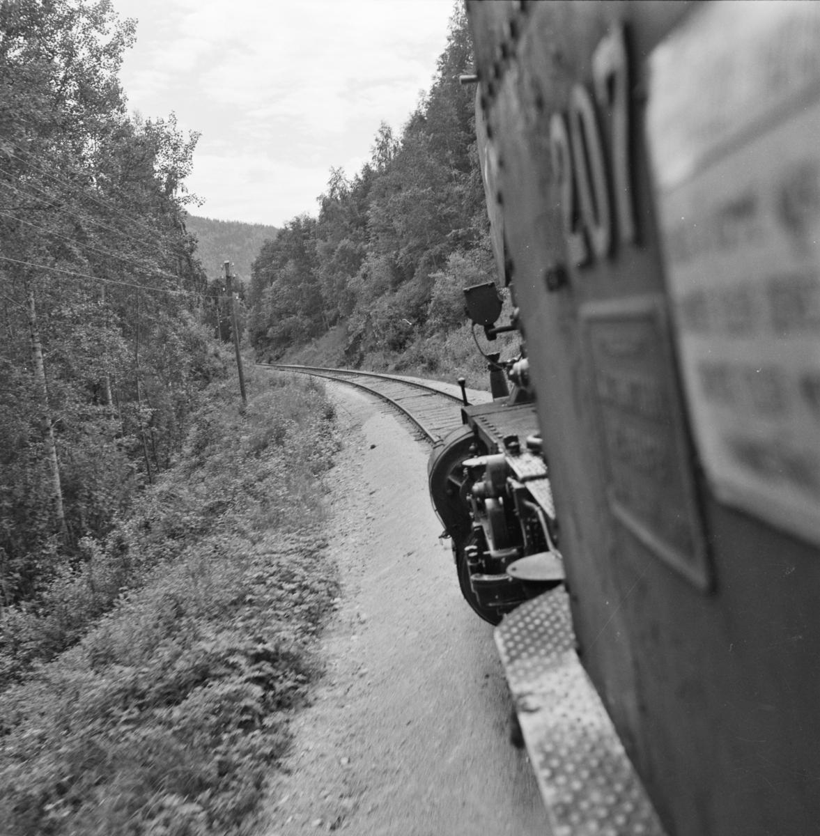 Utsikt fra toget på Numedalsbanen.