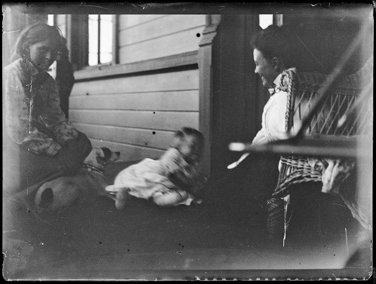 """""""Eidsvold"""" (inskr eske). To damer, en baby og en hund på en veranda."""