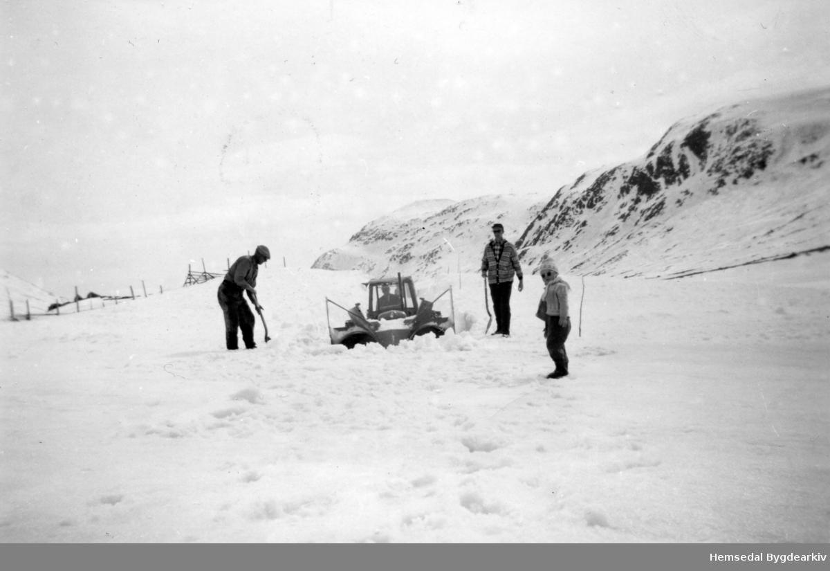 Ved Eldrehaugen på Hemsedalsfejllet. Her var det som oftast ei svær snøfonn. Frå venstre: Erik Sandaker, fødd 1911,  og broren, Marius Sandaker. Den tredje personen er ukjend.