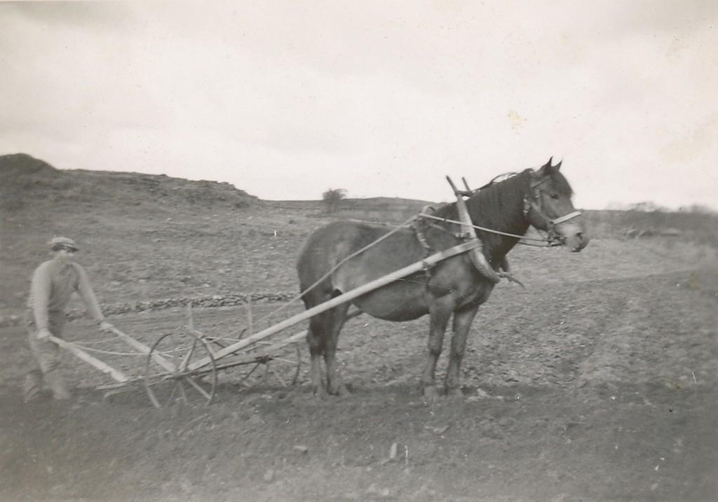 Sven T. Garborg (1918 - 1999) hyppar med hesten Donna.