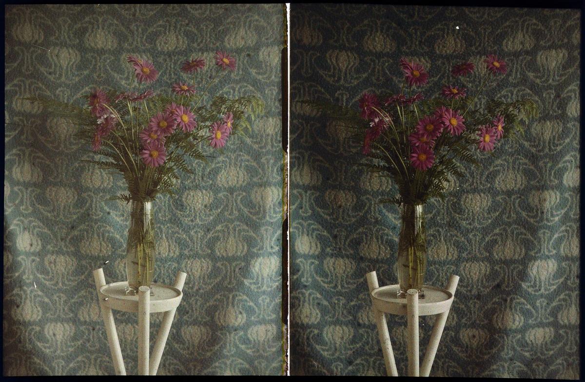 Lumières-stereo-autokrom. Blommor i vas står på bord.