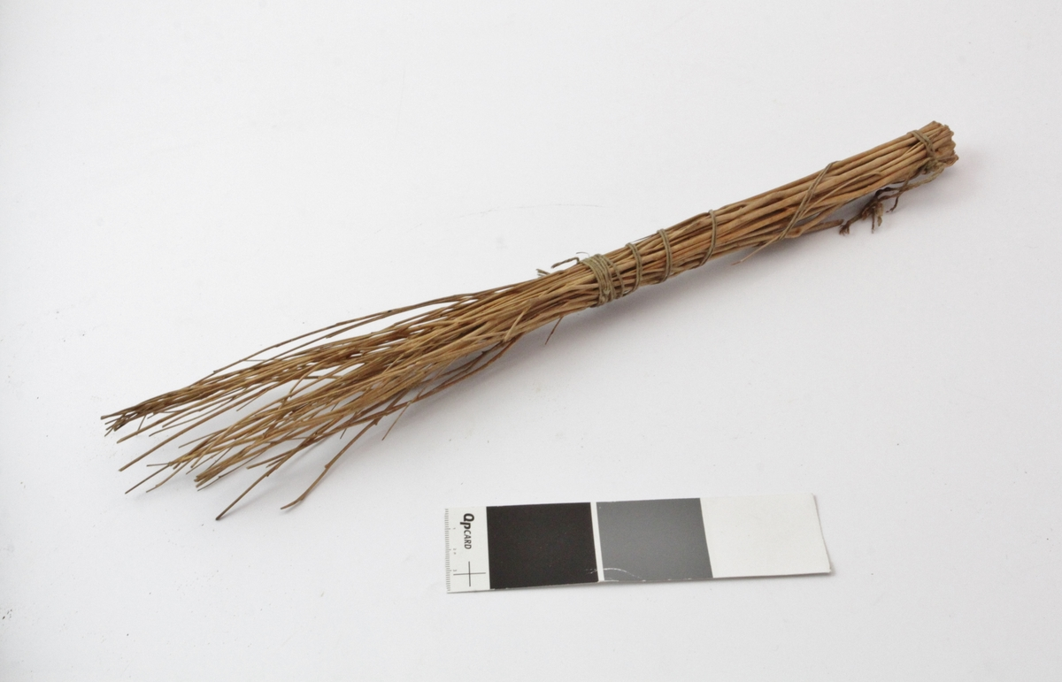 Visp som er laget av tynne grener uten bark og festet sammen i ene enden med tynn hyssing som er surret rundt noen ganger.